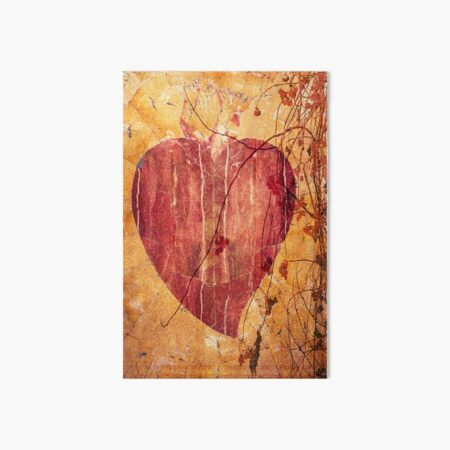 My beautiful heart; a red heart branch and berries  Art Board Print