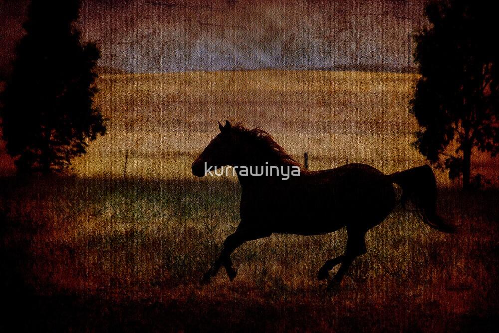 Flying Jane by Penny Kittel