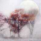 Fall Moon Rising by Mary Ann Reilly