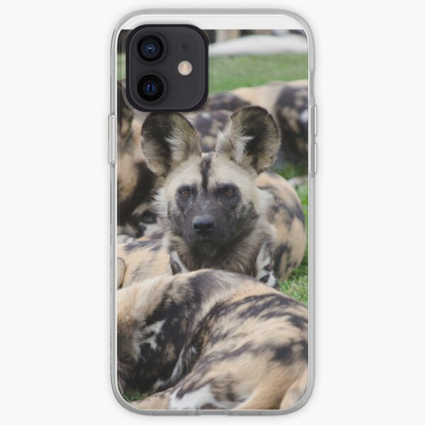 African Painted Dog iPhone case iPhone Soft Case