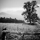 Cades Cove B&W Smoky Mountains Valley 1  by Jason Franklin