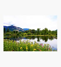 Wildflowers Along the Shuswap Photographic Print