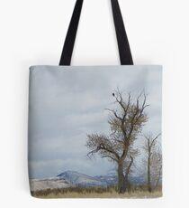 Bald Eagle Perch Tote Bag