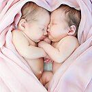 Sisters by Basia McAuley