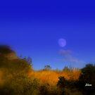 Provo Moon by Shiva77