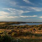 Marion Bay Panorama at Sunset by jermesky