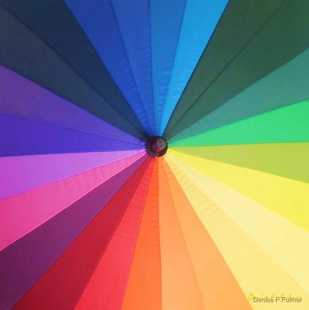 Color Wheel  by Denise Fulmer
