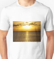 Shore bird taking in the setting sun on the Gulf of Mexico T-Shirt