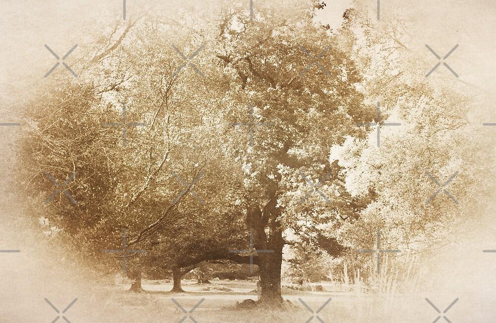 Golden Tree by Denise Abé