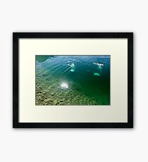 Divers Framed Print