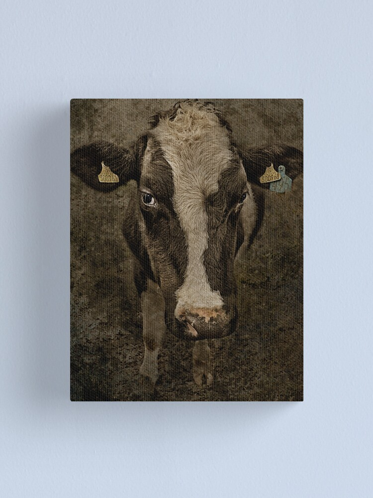 Alternate view of You Looking at Me! Canvas Print