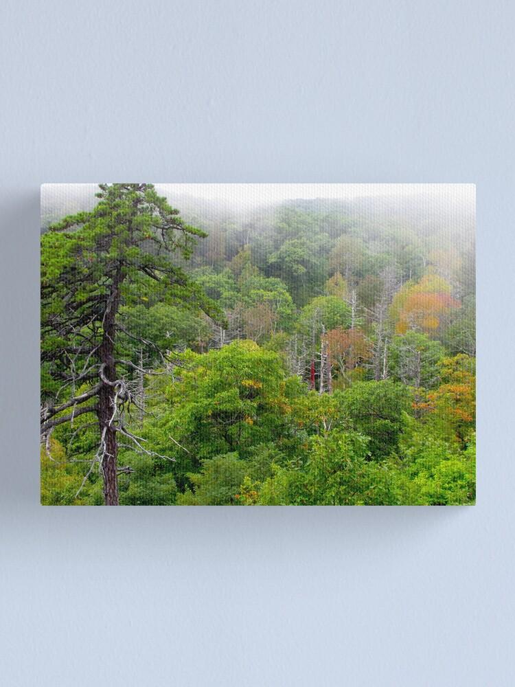 Alternate view of Blue Ridge Autumn 2009 Canvas Print
