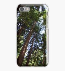 Up the Redwoods iPhone Case/Skin