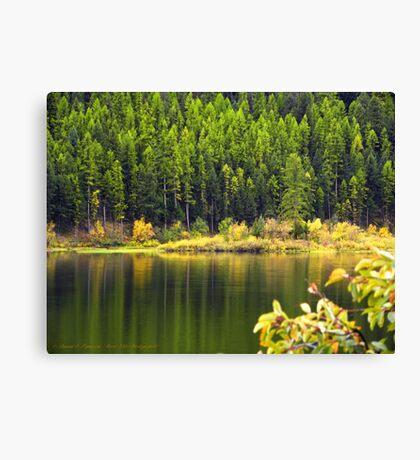 Salmon Lake Reflections Canvas Print