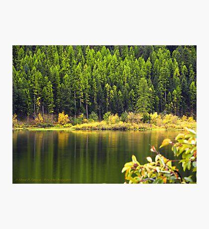 Salmon Lake Reflections Photographic Print