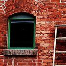 window-wall-ladder-? by picketty