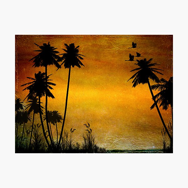 Could Be Paradise Photographic Print