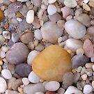 Beach Pebble iPhone Case by Betty Mackey