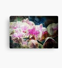orchid grunge Canvas Print