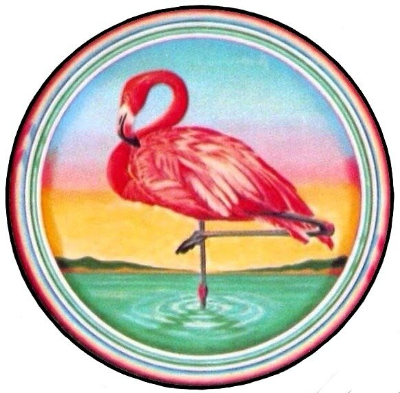 Flamingo by Multimedia  Squad