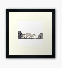 Arctic Fox - Alphabetical Animals Framed Print