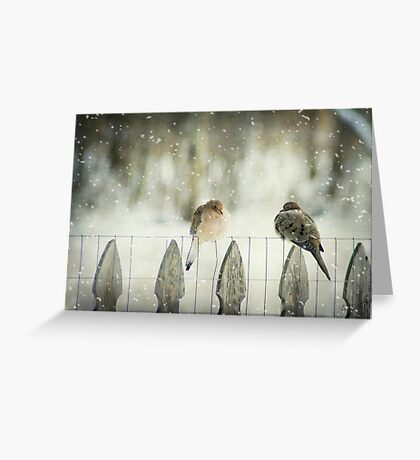 Weathering the First Snow Greeting Card