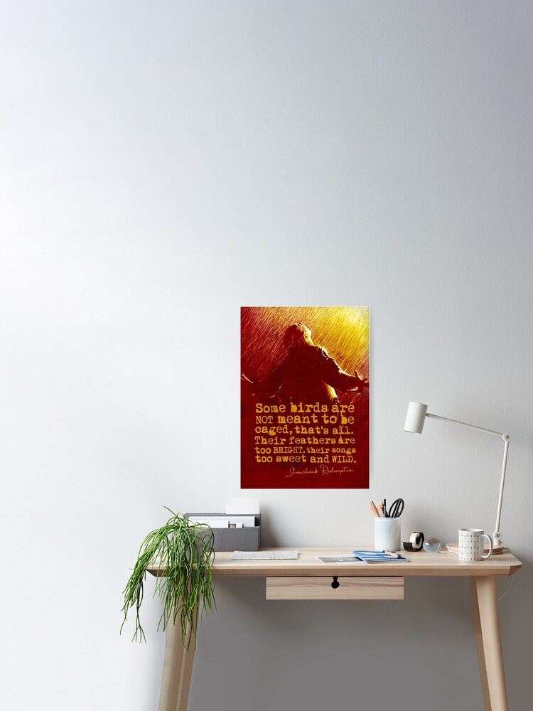 SHAWSHANK REDEMPTION INSPIRATIONAL MOTIVATION QUOTE POSTER PICTURE PRINT