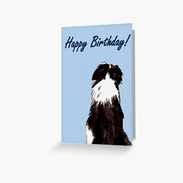 Got Your Back - Birthday Card Greeting Card