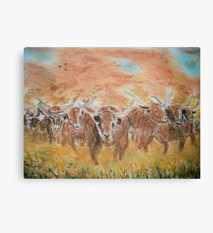 Longhorn stampede Canvas Print