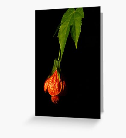 Black With A Hint Of Botanical Element ~ Part Four Greeting Card