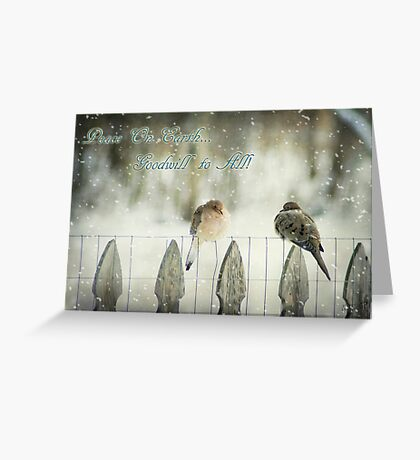 Mourning Dove Christmas Greeting Card