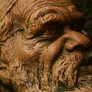 Aboriginal Man, William Ricketts Sanctuary by Leigh Penfold