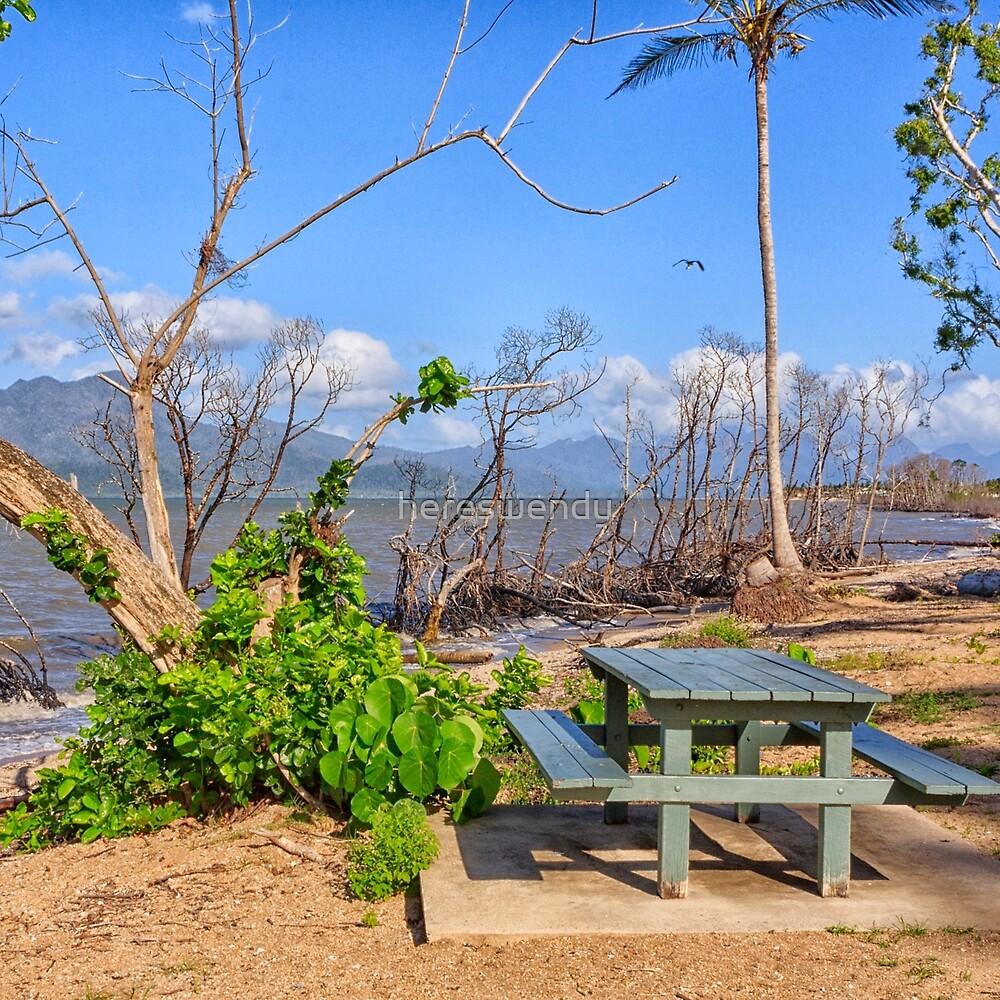 Mangroves and picnic table at the beach by hereswendy
