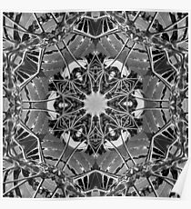 Abstract kaleidoscope of Umbrella Tree in Forest Poster