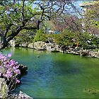 Beautiful Koi Pond Between Belle Isle Conservatory And Aquarium by anitahiltz