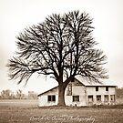 Block Barn by David Owens