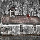 Old School by David Owens