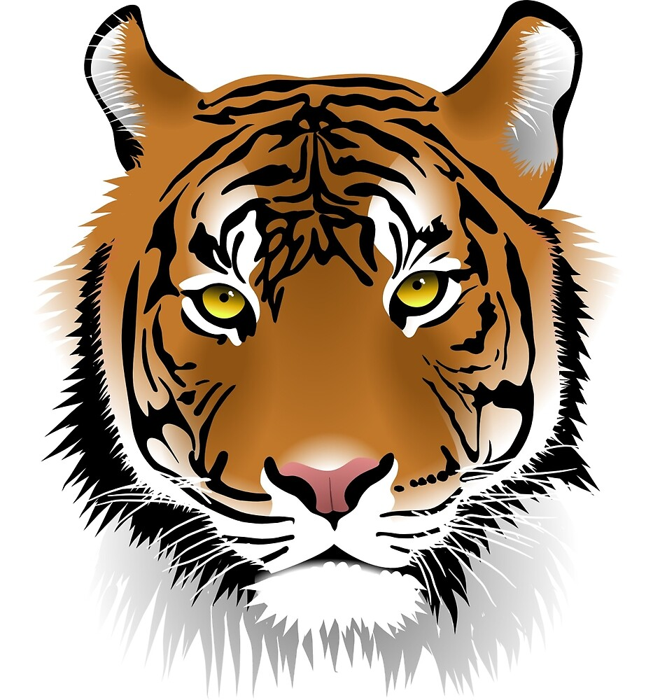 Awesome tiger drawing by mosfunky