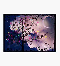 The Paisley Tree Photographic Print