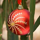 Christmas decoration hanging in Eucalyptus leaves by Kate Schofield