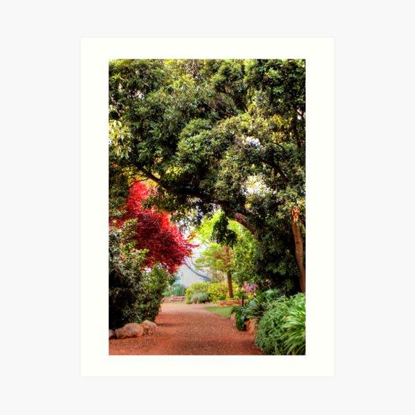 An Open Garden Art Print