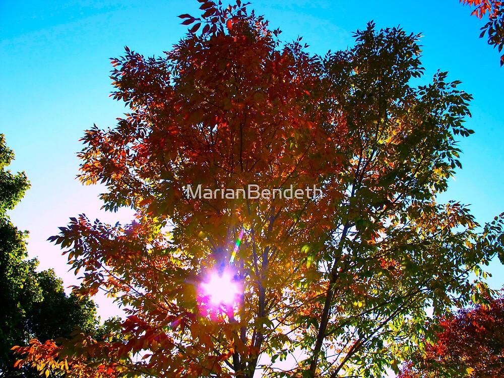 Autumn levity by MarianBendeth