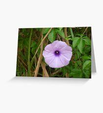 A mezmorizing littly beauty Greeting Card