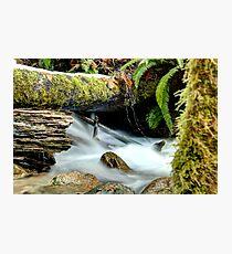 Spraying Fountain Photographic Print