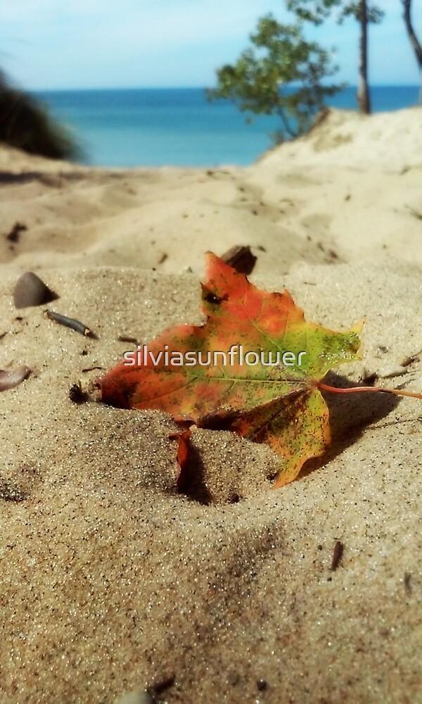 Saugatuck , Michigan by silviasunflower