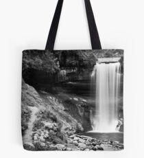 Minnehaha Falls 1 Tote Bag
