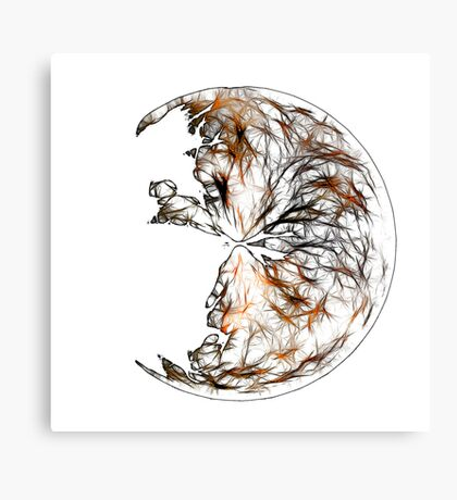 Broken Orb Canvas Print