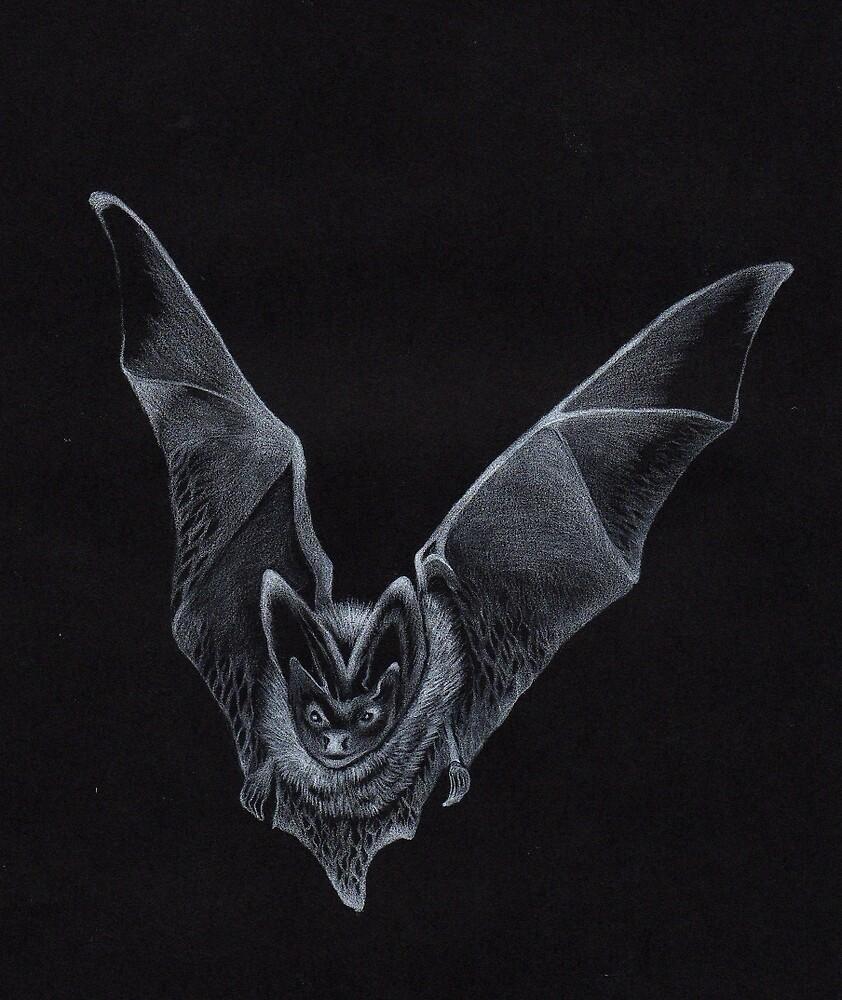 Bat by Rebecca O'Toole