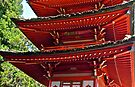 Pagoda, Japanese Tea Garden, Golden Gate Park, San Francisco, California by Scott Johnson