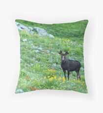 Albion Basin, UT  Throw Pillow